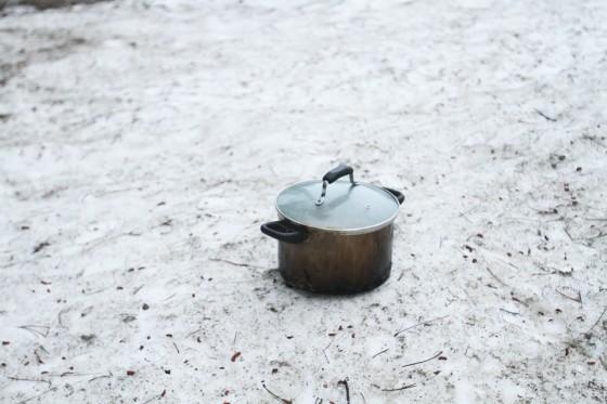 セコイア国立公園リベンジ!