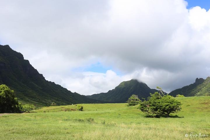 2015_hawaii_02