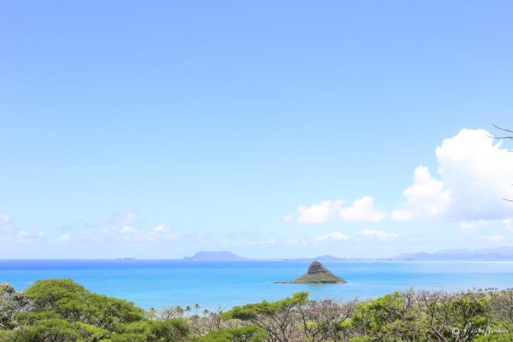2015_hawaii_03